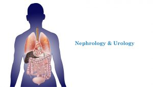 Nephrologists and Urologists in Delhi, India - Venkateshwar Hospital