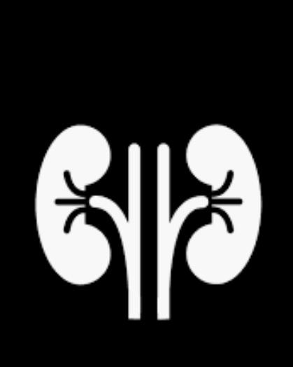 kidney tranplant at Venkateshwar