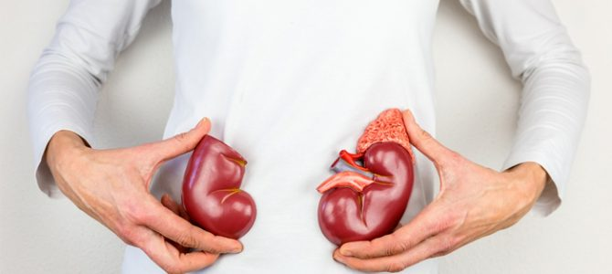 How are Kidney Disease & Heart Disease-Related?